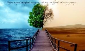 Твой величайший шанс разбогатеть, не откладывай на потом! (Ч. 3)